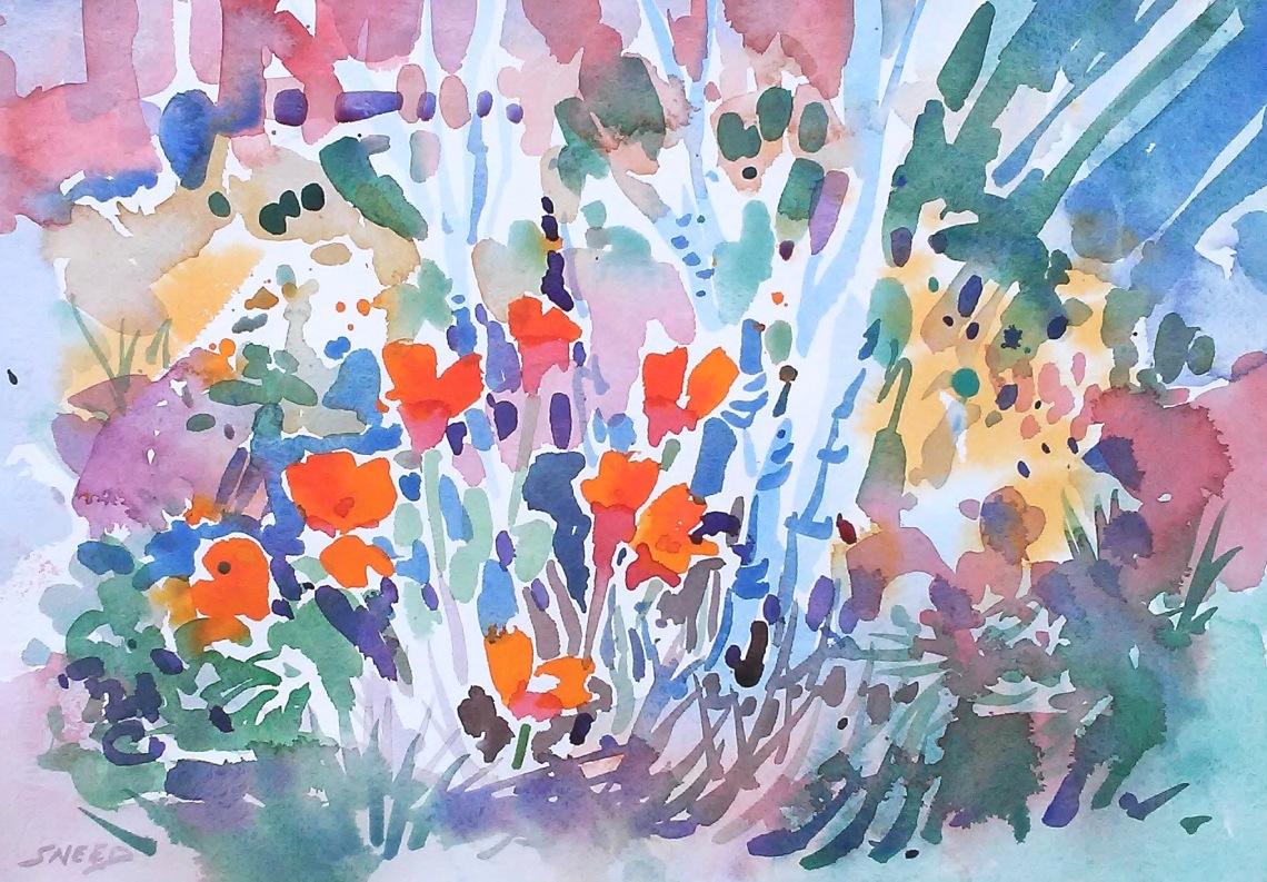 Tilden Poppies, 10 in x 14 in, 20200309